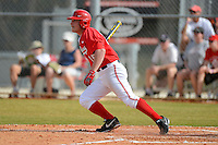 Ohio State Buckeyes outfielder Mike Carroll #15 at bat during a game against the South Dakota State Jackrabbits at North Charlotte Regional Park on February 23, 2013 in Port Charlotte, Florida.  Ohio State defeated South Dakota State 5-2.  (Mike Janes/Four Seam Images)