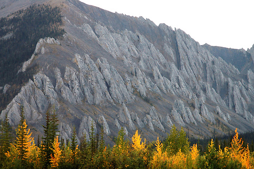 Blackstone River.Yukon, Canada .August, 2005.
