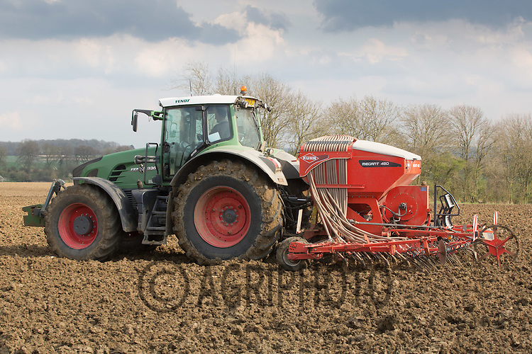 Fendt tractor Spring drilling with  a pneumatic seed drill   <br /> Picture Tim Scrivener 07850 303986 <br /> scrivphoto@btinternet.com<br /> ….covering agriculture in the UK….