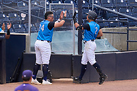 Tampa Tarpons Anthony Volpe (12) high fives Andres Chaparro (24) after hitting a home run during a game against the Fort Myers Mighty Mussels on May 23, 2021 at George M. Steinbrenner Field in Tampa, Florida.  (Mike Janes/Four Seam Images)
