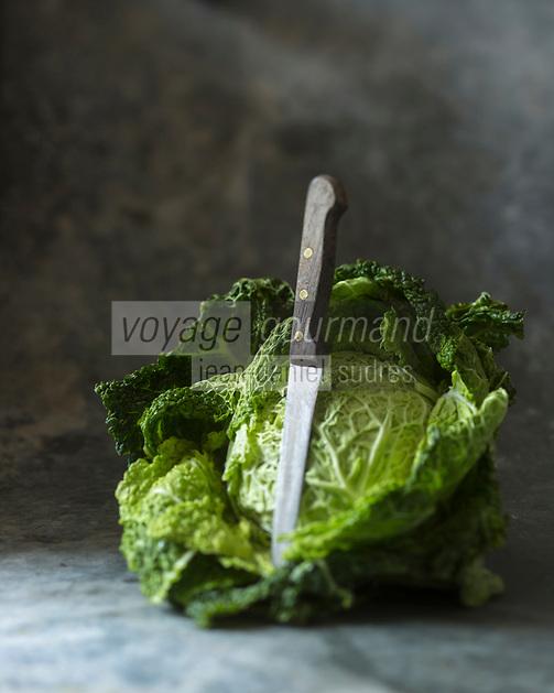 Gastronomie Générale:  Chou vert // Cabbage