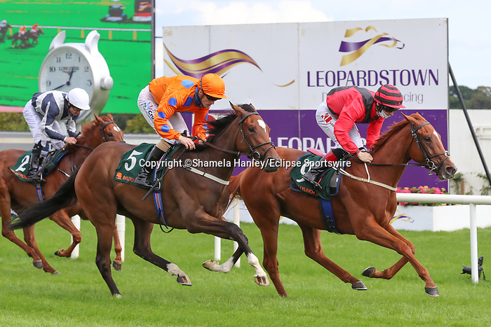 September 11, 2021: Panama Red (Ire) #9, ridden by jockey Colin Keane prevails over Limiti Di Greccio (Ire) #5 ridden by jockey Billy Lee to win the Listed Ingabelle Stakes on the turf on Irish Champions Weekend at Leopardstown Racecourse in Dublin, Ireland on September 11th, 2021. Shamela Hanley/Eclipse Sportswire/CSM