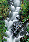 Stream, Chugach State Park, Alaska, USA