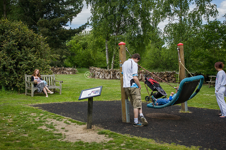 A mother  breastfeeding her child during a family outing to a local park and gardens. She is watching her husband play with her older boy on a swing.<br /> <br /> 11-06-2015