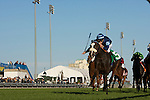 Thoroughbred Racing 2010
