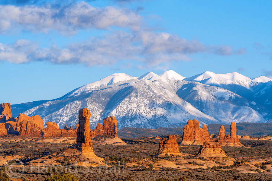 Driving home through Utah, I could not help but pull into Arches National Park for a quick photo of a recent snow.