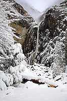 LOWER YOSEMITE FALLS STANDS OUT DURING A WINTER SNOWSTORM IN YOSEMITE NATIONAL PARK, CALIFORNIA