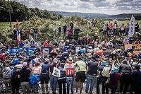 Peloton up the brutal Mûr-de-Bretagne finish climb<br /> <br /> Stage 2 from Perros-Guirec to Mûr-de-Bretagne, Guerlédan (184km)<br /> 108th Tour de France 2021 (2.UWT)