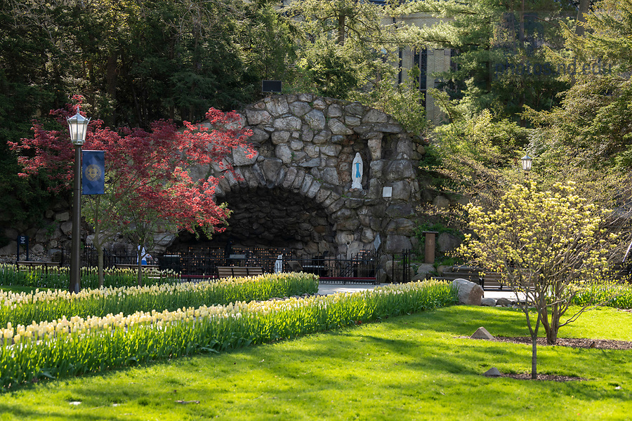 May 4, 2020; Grotto, spring 2020  (Photo by Barbara Johnston/University of Notre Dame)