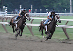 Uncle Mo (outside), trained by Todd Pletcher, works in company and gets in his last work before an anticipated start in net Saturday's grade 1 King's Bishop Stakes for three year olds on August 21, 2011 at Saratoga Race Track in Saratoga Springs, New York.  (Bob Mayberger/Eclipse Sportswire)