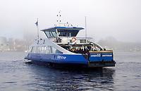 Nederland  Amsterdam - 2 jan 2021.   Mist. Pont vaart over het IJ.   Foto : ANP/ HH / Berlinda van Dam