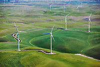 aerial photograph of the Shiloh wind power plant, Montezuma Hills, Solano County, California