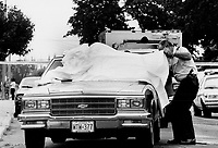 1988 File -<br /> <br /> Murder vehicle: A homicide investigator examines a taxi whose driver was found slain behind the wheel on a quiet street in Toronto's west end.<br /> <br /> Photo : Boris Spremo - Toronto Star archives - AQP