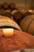 A barrel being cleaned with sulphur Bodega Bouza Winery, Canelones, Montevideo, Uruguay, South America
