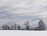 February landscape in northern Wisconsin.