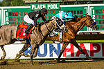 JULY 18, 2020 : Authentic, #2 with Mike Smith aboard, holds of NY Traffic, to win the Grade 1 Haskell Stakes, for 3 year olds, going 1 1/8 mile, at Monmouth Park, Elmont, NY.  Sue Kawczynski/Eclipse Sportswire/CSM