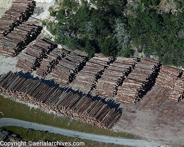 aerial photograph logging coastal Santa Cruz county, California