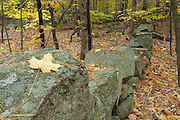 Stonewall from the abandoned 19th century mountain settlement in the forest  of Pawtuckaway State Park in Nottingham, New Hampshire USA