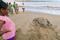 Tourists visit an overcrowded beach in Trinidad to view nesting Leatherback Sea Turtles. Dermochelys coriacea. Matura Beach, Trinidad.