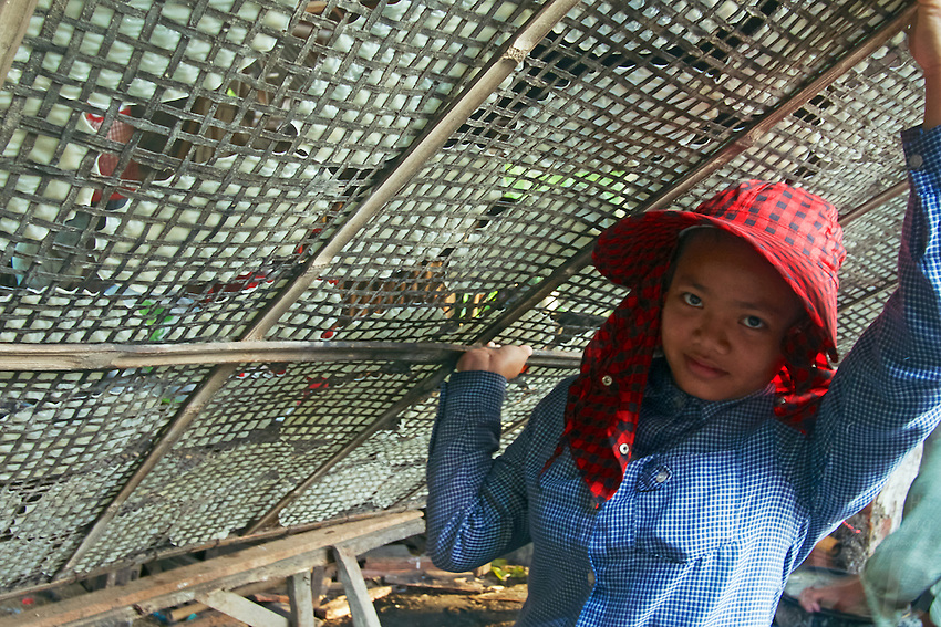 Battambang is famous for producing some fine rice paper, Cambodia