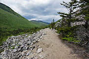 Zealand Notch - Scenic view from along the Appalachian Trail (Ethan Pond Trail) in the New Hampshire White Mountains during the summer months. This trail utilizes parts of the old railroad bed of the Zealand Valley Railroad (1884-1897).