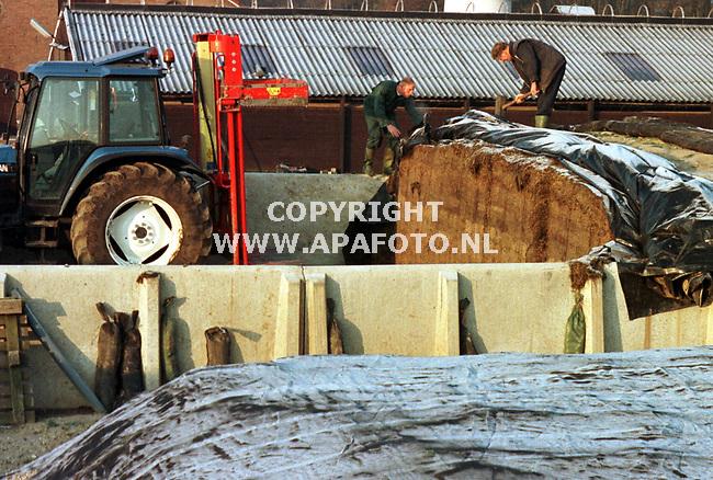 Arnhem,23-11-98  foto:Koos Groenewold<br /> Bij de familie van Veelen hebben ze nog weinig problemen met de vorst.Alleen het kuilvoer bevriest en dat is lastig.