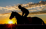 October 1, 2020: Horses exercise at sunrise as horses prepare for the Preakness Stakes Week races at Pimlico Race Course in Baltimore, Maryland. Scott Serio/Eclipse Sportswire/CSM