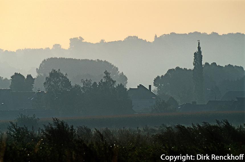 Belgien, Flandern, Morgennebel in Westbrabant