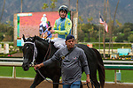 ARCADIA, CA  FEBRUARY 4: #3 St. Joe Bay, ridden by Kent Desormeaux, in the winners' circle after winning the Palos Verdes Stakes (Grade ll) at Santa Anita Park, on February 4, 2017 in Arcadia, Ca.  (Photo by Casey Phillips/Eclipse Sportswire/Getty Images)ARCADIA, CA  FEBRUARY 4: #11 Isotherm, ridden by Flavien Prat,  return to the winners circle after winning the San Marcos Stakes (Grade ll) on February 4, 2017, at Santa Anita Park in Arcadia, CA.  (Photo by Casey Phillips/Eclipse Sportswire/Getty Images)