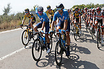 Movistar Team in the peloton during Stage 6 of La Vuelta d'Espana 2021, running 158.3km from Requena to Alto de la Montaña Cullera, Spain. 19th August 2021.    <br /> Picture: Luis Angel Gomez/Photogomezsport   Cyclefile<br /> <br /> All photos usage must carry mandatory copyright credit (© Cyclefile   Luis Angel Gomez/Photogomezsport)