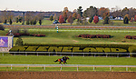 October 31, 2020: Leinster, trained by trainer George R. Arnold II, exercises in preparation for the Breeders' Cup Turf Sprint at  Keeneland Racetrack in Lexington, Kentucky on October 31, 2020. Alex Evers/Eclipse Sportswire/Breeders Cup