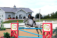 2016 Horse Shows