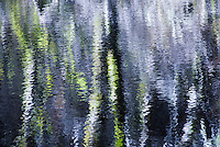 """IMPRESSIONIST MAGIC""<br />