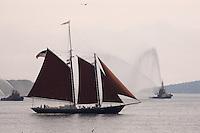 Schooner tall ship with fire boats and sea gulls, Halifax Harbour Nova Scotia Canada North America