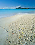 Antigua, West Indies  <br /> Shells scattered on the white sand beach and turquoise waters of Valley Church Bay with Pearns Point in the distance