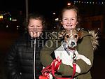 Christmas Lights Bettystown 2017