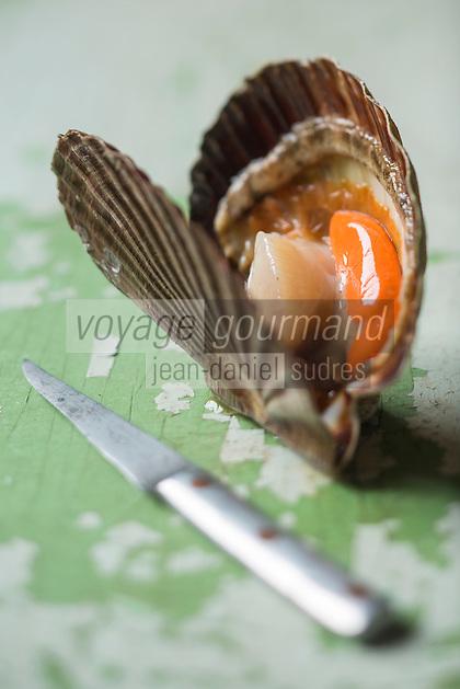 Europe/France/Normandie/Basse-Normandie/14/Calvados: Coquilles Saint-Jacques de Normandie - Stylisme : Valérie LHOMME  //  France, Calvados, Calvados, Normandy scallops, Styling Valerie Lhomme