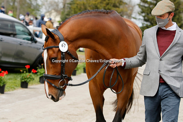 April 21, 2021: 67 Off The Record and rider William Coleman from the USA in the first horse veterinary inspection at the Land Rover Three Day Event at the Kentucky Horse Park in Lexington, KY on April 21, 2021.  Candice Chavez/ESW/CSM