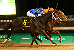 LOUISVILLE, KY -NOV 25: Enticed (#6, Junior Alvarado) wins the 91st running of the G2 Kentucky Jockey Club Stakes at Churchill Downs, Louisville, Kentucky. Owner Godolphin LLC (Mohammed Al Maktoum et al), trainer Kieran P. McLaughlin. By Medaglia D'Oro x It's Tricky, by Mineshaft. (Photo by Mary M. Meek/Eclipse Sportswire/Getty Images)