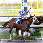 HALLANDALE BEACH, FL - FEB 17:Page McKenney #3 trained by Mary E. Eppler with Irad Ortiz, Jr. in the irons wins the $60,000 Old Hickory Claiming Stakes at Gulfstream Park on February 17, 2018 in Hallandale Beach, Florida. (Photo by Bob Aaron/Eclipse Sportswire/Getty Images)