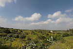Israel, Shephelah region. Scenery near Agur by route 353