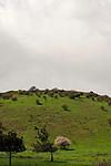 Golan Heights, Mount Baron