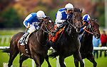 Silentio (center, white cap) ridden by Rafael Bejarano narrowly defeats Summer Front ridden by Joe Bravo and Winning Prize with Corey Nakatani to win the Citation Handicap on November 29, 2013 at Betfair Hollywood Park in Inglewood, California .(Alex Evers/ Eclipse Sportswire)
