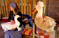 Visitors met Mother Goose and her family at the annual Carolina Renaissance Festival in November 2011. The annual Renaissance Festival and Fair takes place each October and November in Huntersville, NC, near Charlotte, NC.