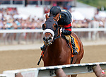 Timber Ghost (no. 7) wins Race 2, Aug. 19, 2018 at the Saratoga Race Course, Saratoga Springs, NY.  Ridden by  Junior Alvarado, and trained by James Jerkens,  Timber Ghost  finished 9 1/2 lengths in front of Leinster (no. 4).  (Bruce Dudek/Eclipse Sportswire)