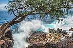 A big Pacific Ocean wave meets solidified lava on the south coast of the Big Island of Hawaii, in Mackenzie State Park.
