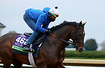 Raging Bull, trained by trainer Chad C. Brown, exercises in preparation for the Breeders' Cup Mile at Keeneland Racetrack in Lexington, Kentucky on October 30, 2020.