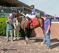 Kathy's Kitten winning at Delaware Park on 6/5/13