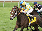 October 18, 2014: Sky Flight and jockey Shaun Bridgmohan win the 4th race.  Candice Chavez/ESW/CSM