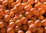 Deutschland, Mandarinen   Germany, tangerines
